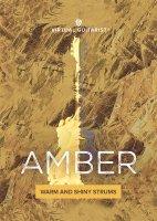 VG Amber Artwork